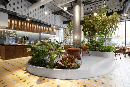 Devocion Cafe in downtown Brooklyn by LOT office for architecture