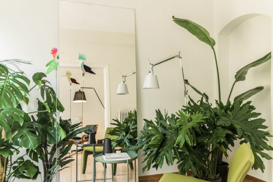 Plants and The City: Athenian apartment renovation in Kolonaki by Constantine Bouras